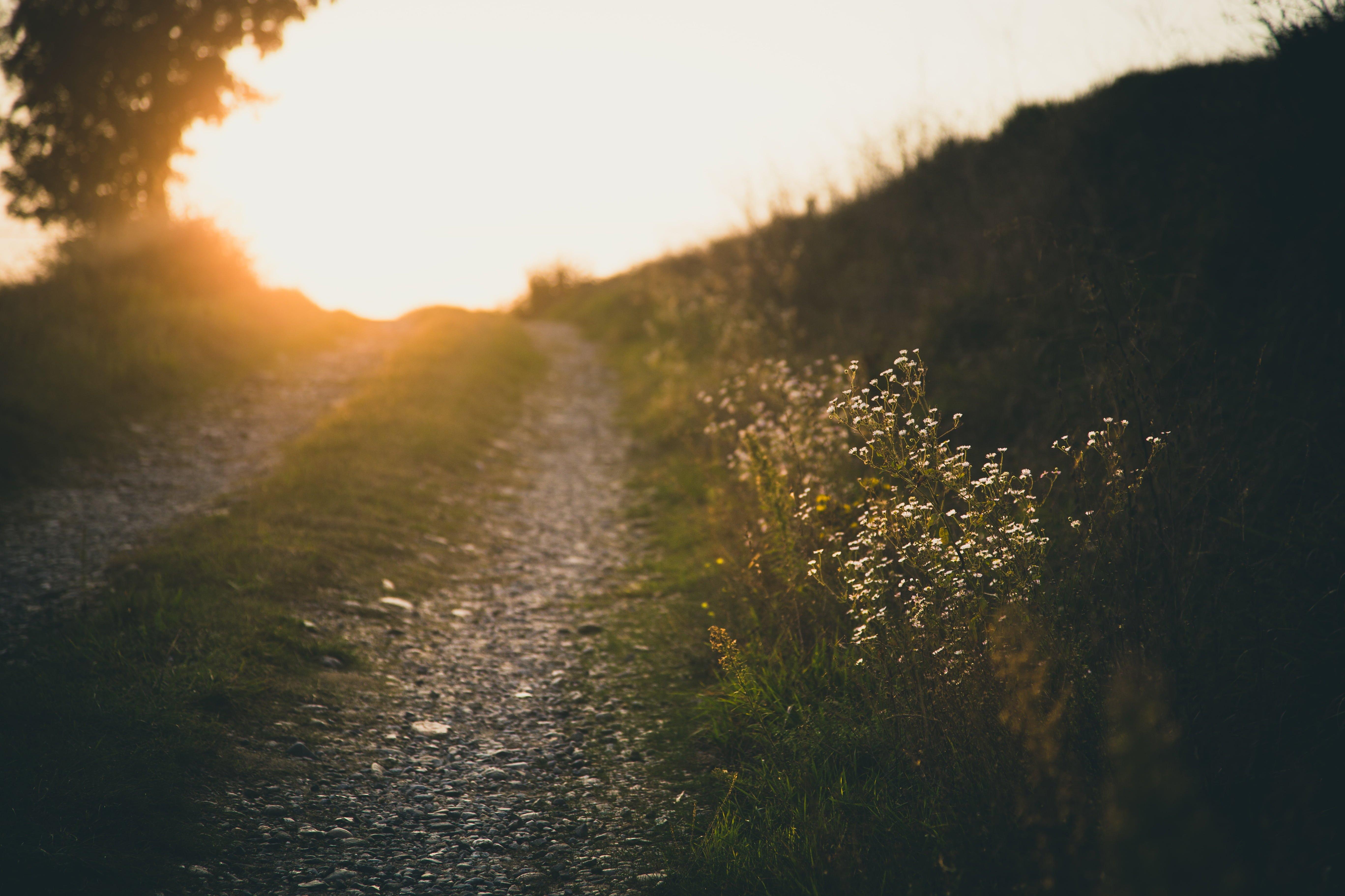Medytacja jako ścieżka stawania się i bycia