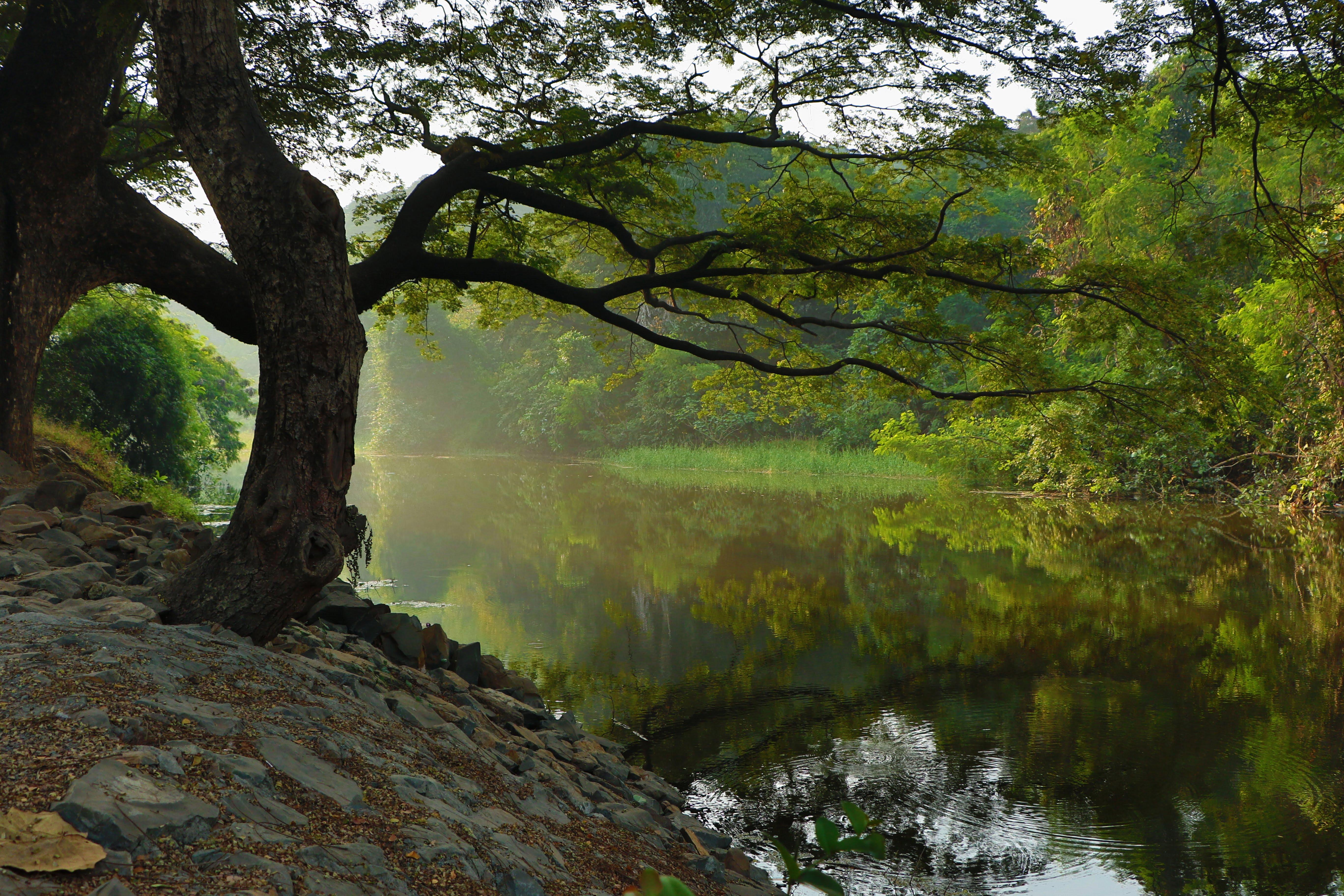 """""""Kamień w wodę"""" – praktyka uważnej obecności"""