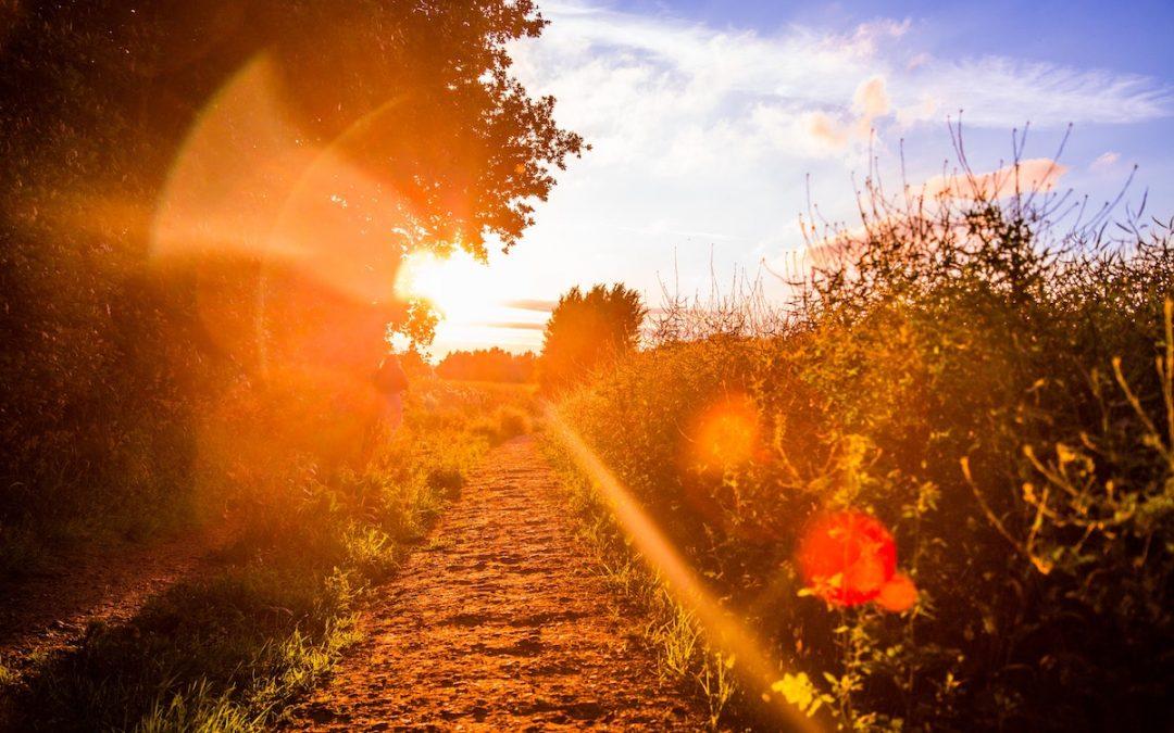 O samotności i niespójności, które pozwalają wrócić do siebie…